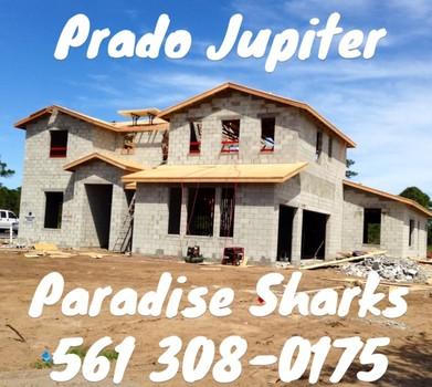 Prado Jupiter
