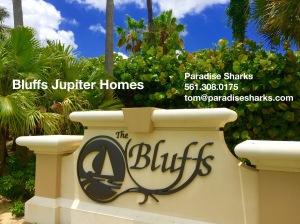 Bluffs Single Family