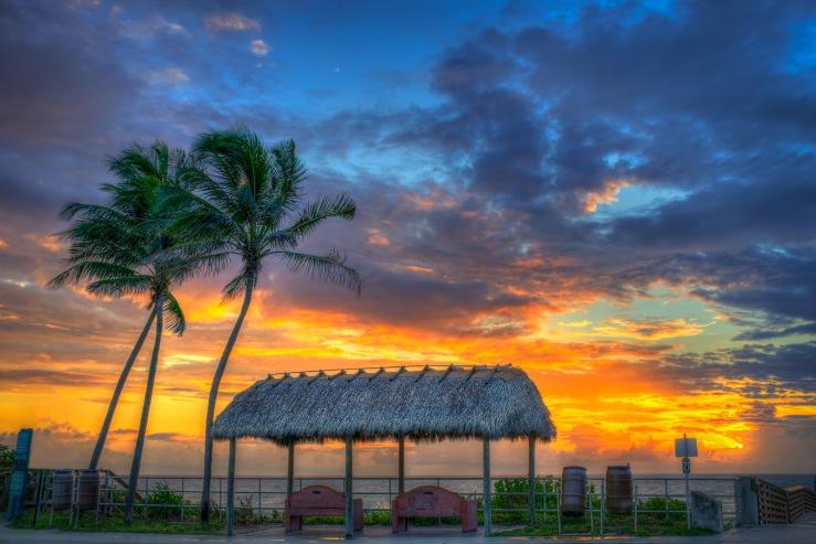 Juno Beach Pier Sunrise Coconut Tree Tiki Sunrise