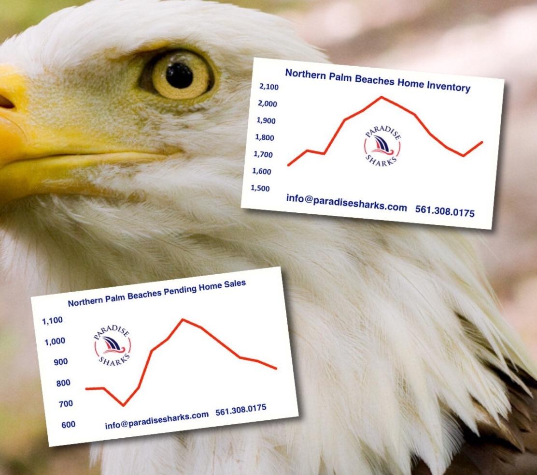 eagle-blog