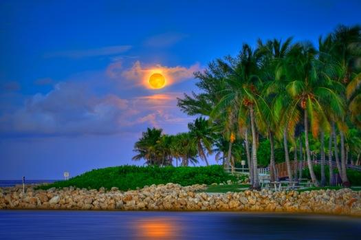 Blue Moon Rise August 2012 Over Jupiter Inlet at Dubois Park Jupiter Florida