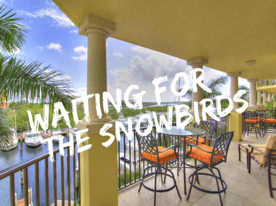 Blog Pic SNOWBIRDS
