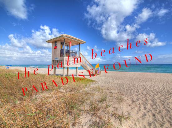 Blog PALM BEACHES