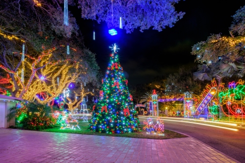 Christmas Tree at the End of Snug Harbor Palm Beach Gardens