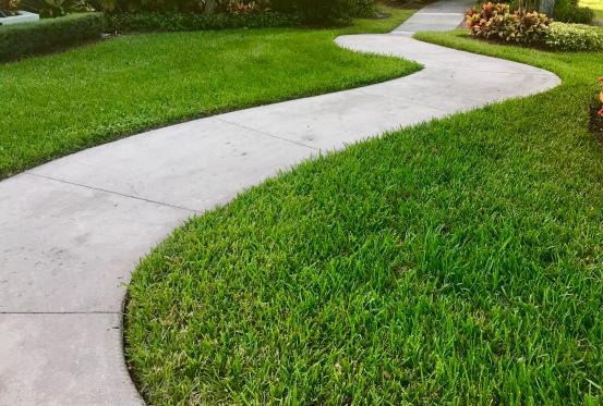 sidewalk picture